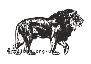 Clipart african lion