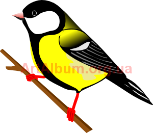 Clipart great tit