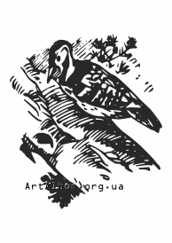 Clipart woodpecker