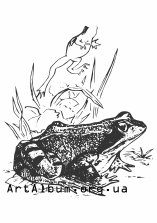 Clipart common frog