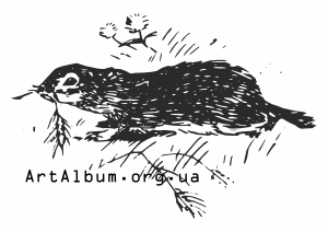 Clipart ground squirrel