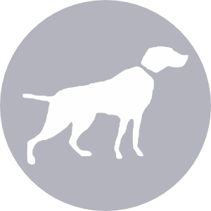 Clipart icon with hunter dog