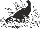 Clipart black grouse or blackgame (Tetrao tetrix)